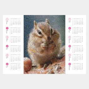 最愛のペット写真で翌年のカレンダー