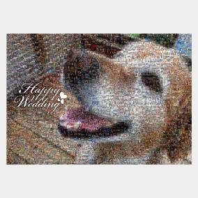 愛犬写真を使ったウェルカムボード
