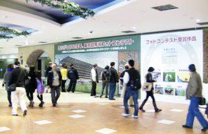 ありがとう80周年 東京競馬場フォトコンテスト